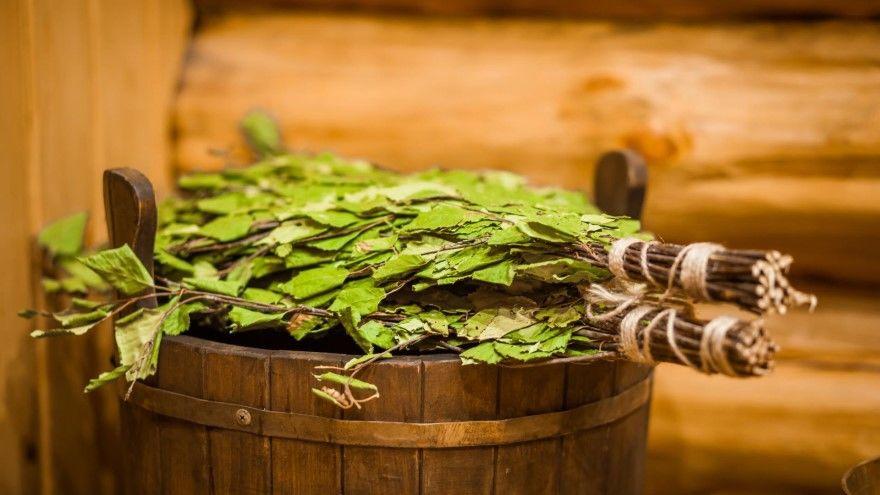 Веник для бани фото березовый дубовый