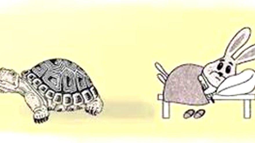 Читать басню Михалков полностью Заяц и Черепаха