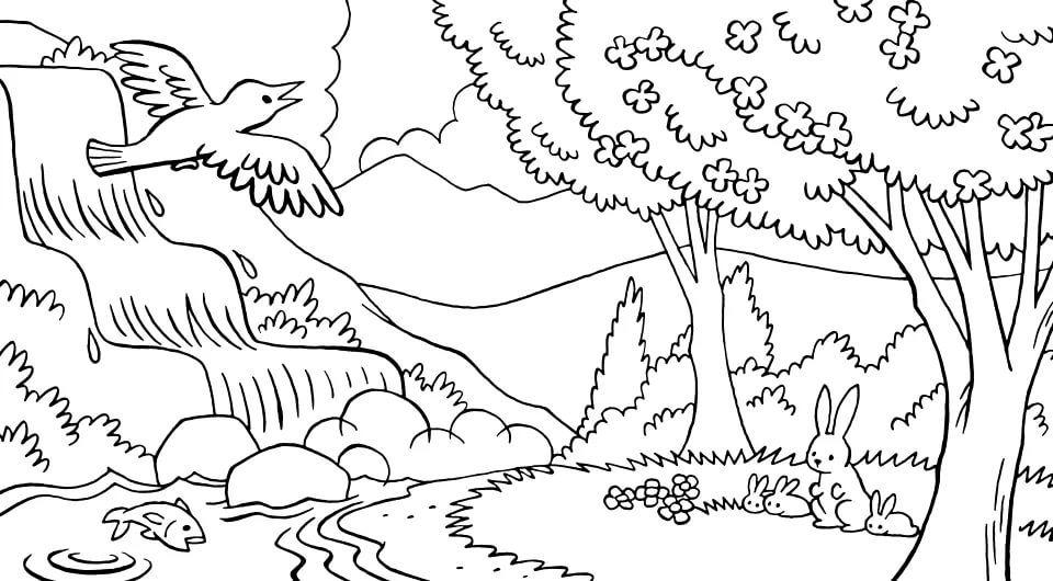 Природа раскраски для детей распечатать бесплатно