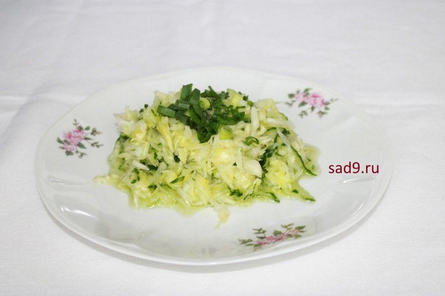 Салат рецепт из капусты способ приготовления фото