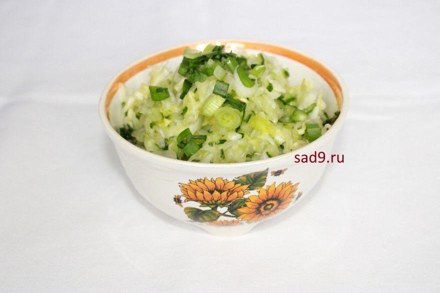 Салат из капусты свежей огурцов рецепт фото пошаговый
