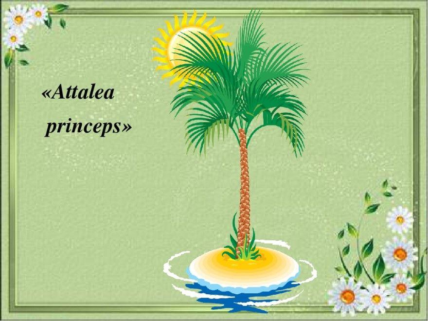 Читать сказка Аttalea princeps Гаршин текст