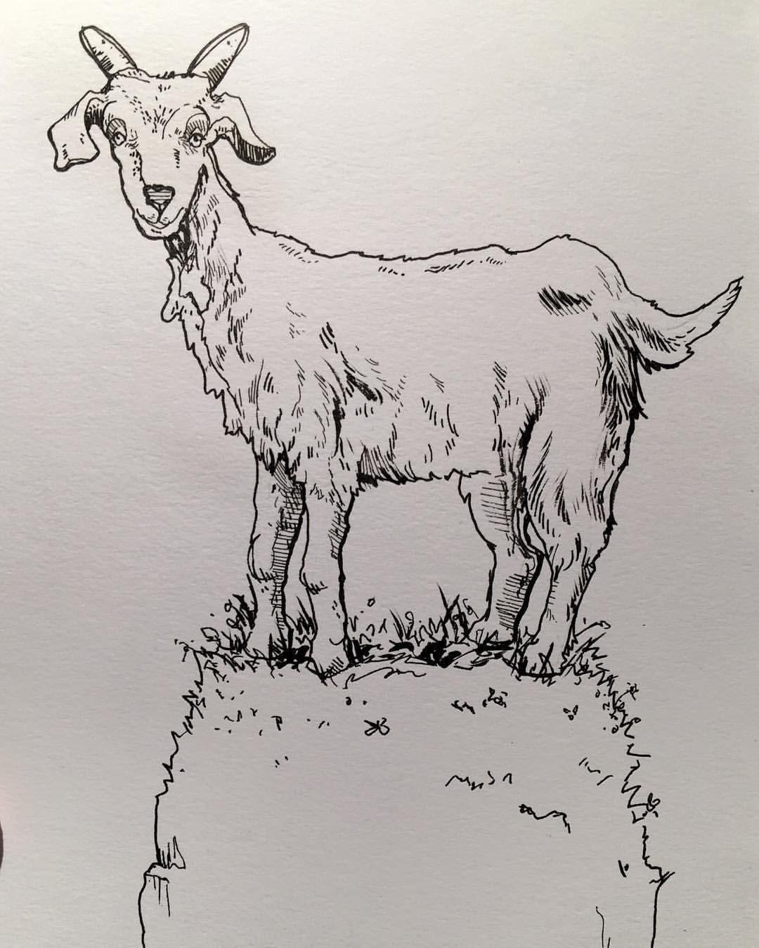 Читать рассказ Мамин Сибиряк бесплатно Упрямый козел