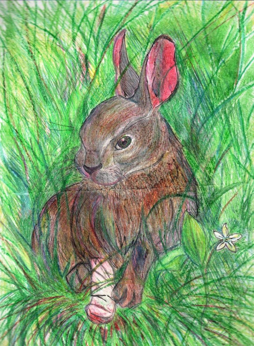 Читать рассказ Паустовский Заячьи лапы бесплатно онлайн